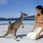 Австралийские мамы в картинках