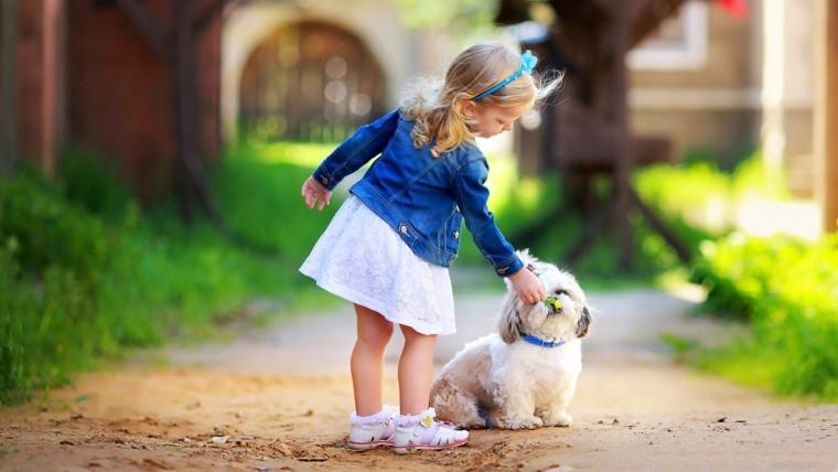 Девочка-и-собака-2