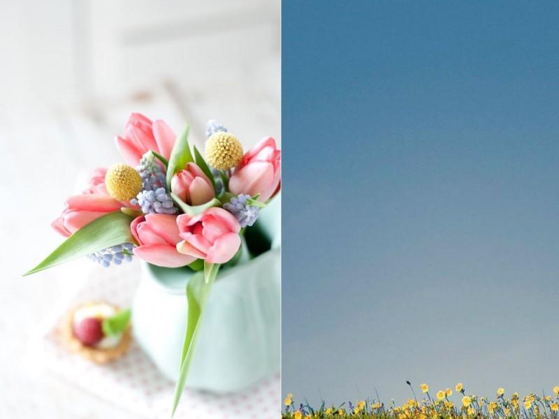 10 вещей, которые просто необходимо сделать весной