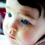 «Не нужно плакать. Нужно конструктивно помогать!»