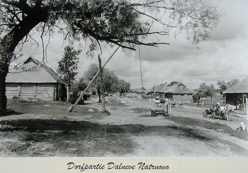 Русская деревня в объективе немецкого солдата ( Фото)