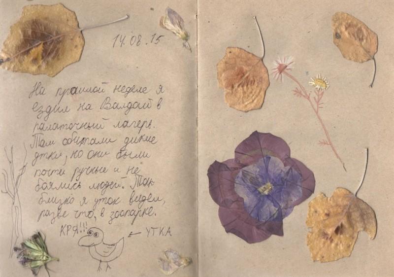 Рисуем дневник наблюдений, или День за днём