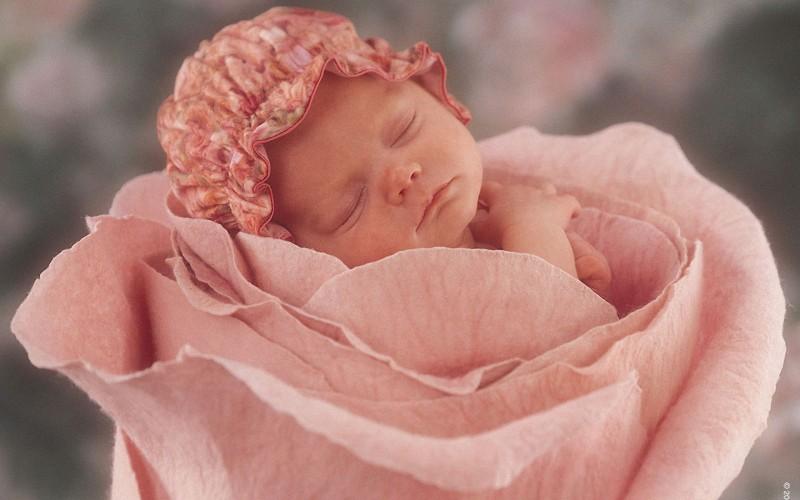 flower-fairy-baby_90355-1920x1200