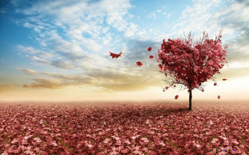 14 вещей, которые убивают любовь