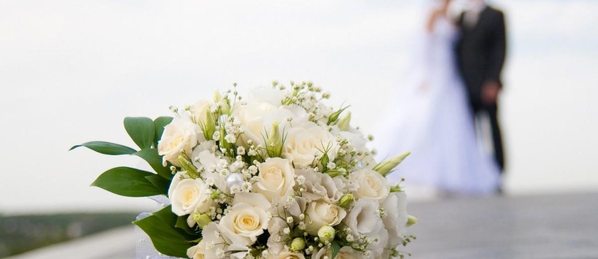 Дурачки, свадебное платье и полведра оливье