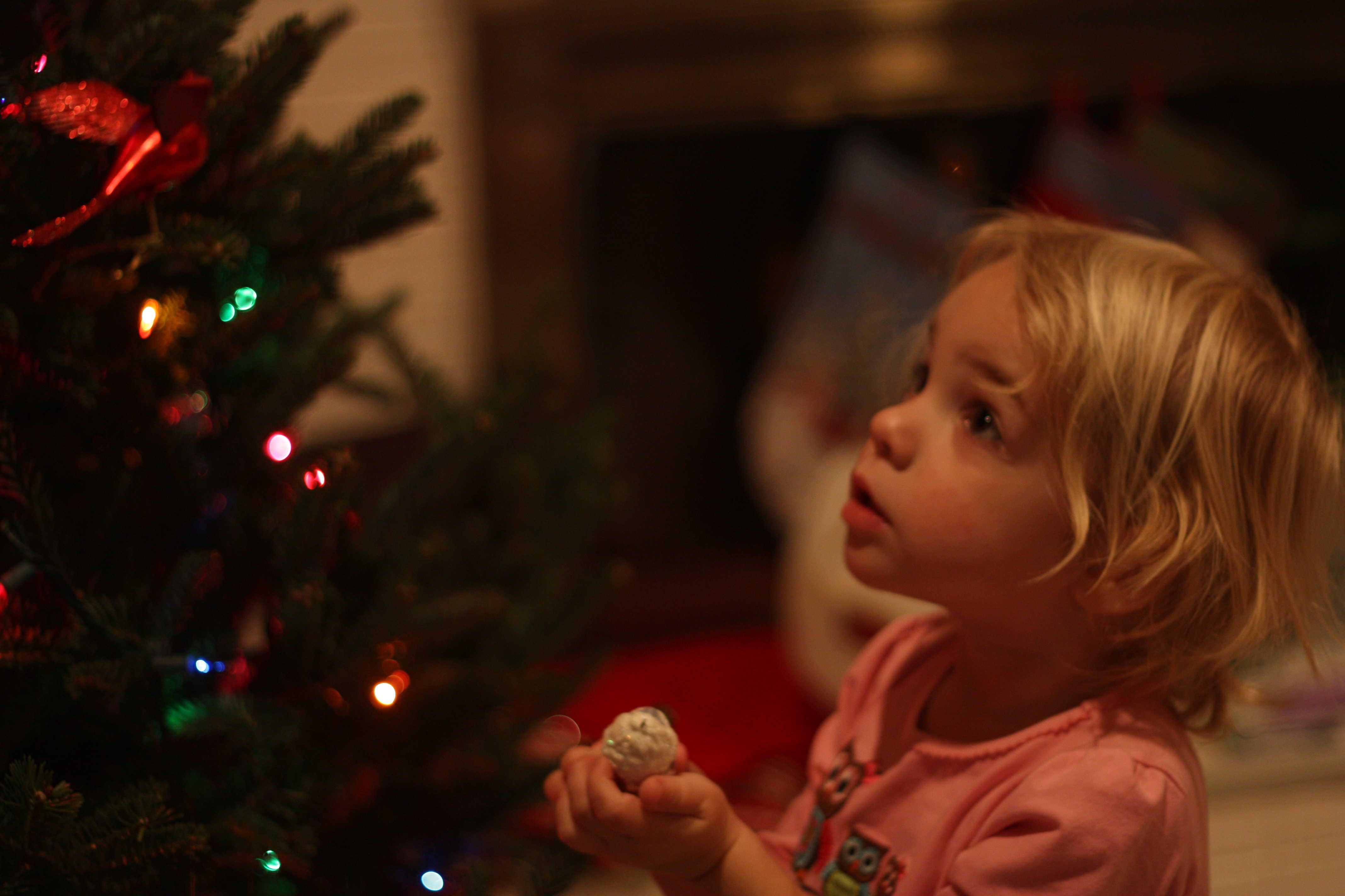livy-and-christmas-tree