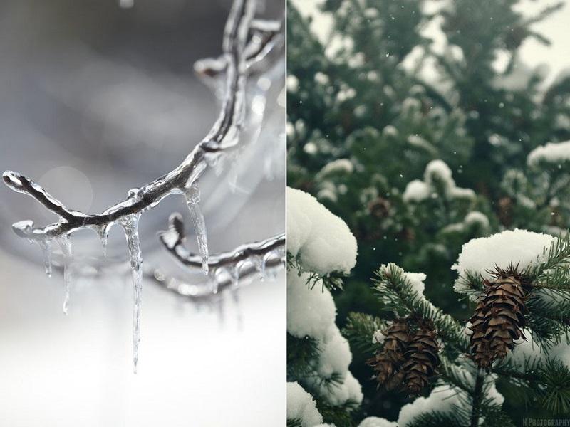 10 волшебных планов на февраль