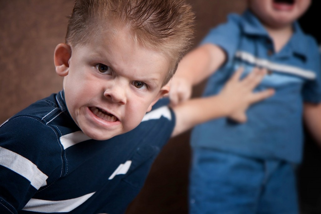 destructive sibling conflict and development conduct problems in young boys Sibling abuse (or intersibling abuse although it has been found to be the most prevalent type of abuse in sibling conflict pro-social skill development to.