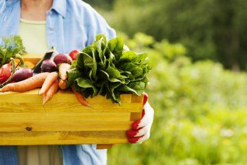 Фермерские продукты: как отличить настоящее от подделки