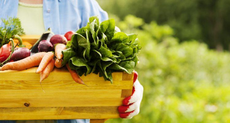 Картинки по запросу Фермерские продукты
