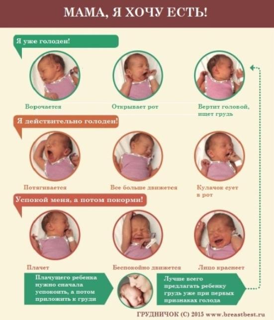 ребенку 1 2 года симптомы перегорания молока