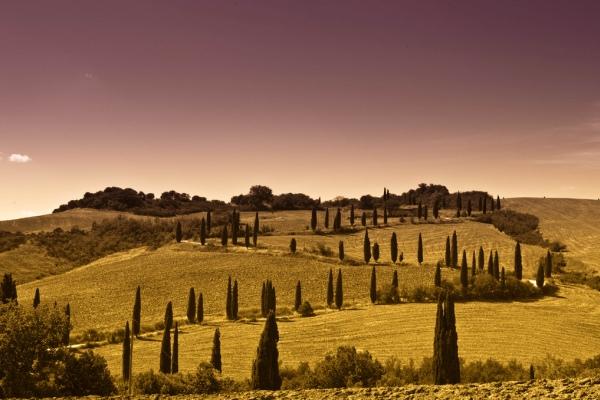 Тоскана: место, где хочется стать лучше