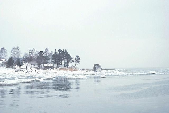 В Эстонии: море, сосны и пирог с ревенем