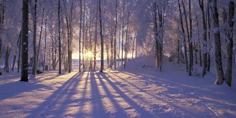 winter-photo-1024x768-0013 (1)